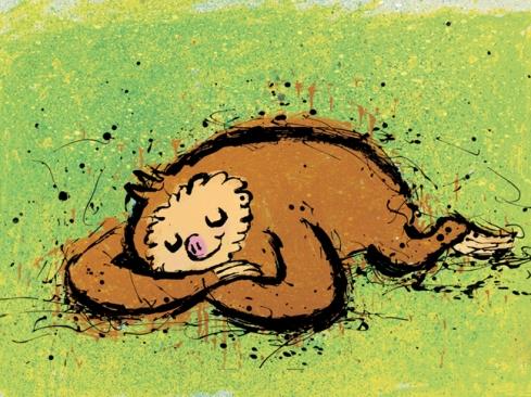 Sloth_sleeping2_web