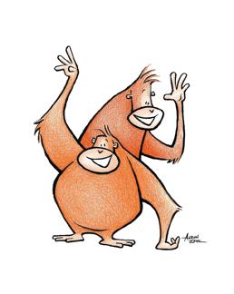 orangutangsbyaaron